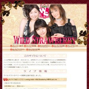 のいちご25(にっこり) ~Lasting smile~Wild Strawberry10周年Last Live