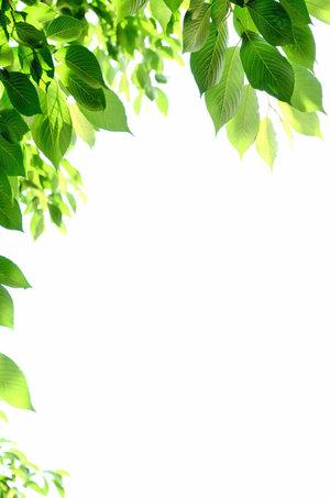【声彩羽presents サマ★フェス】 「3部★打ち上げトークショー」