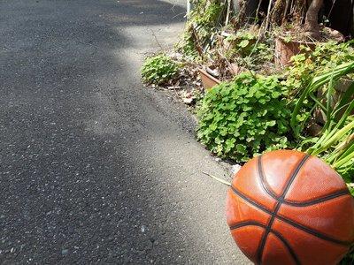ガールズバスケット! 8月11日 14:00~