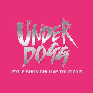 "EXILE SHOKICHI LIVE TOUR 2019""UNDERDOGG"" 7/27 静岡公演"