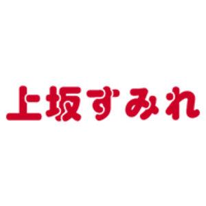 上坂すみれ10thシングル「ボン♡キュッ♡ボンは彼のモノ♡」発売記念ポスターお渡し会(大阪)