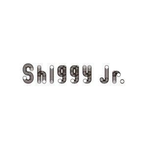 Shiggy Jr. LAST LIVE -That's what I call Shiggy Jr.-