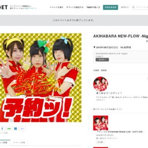 AKIHABARA NEW-FLOW -Night-