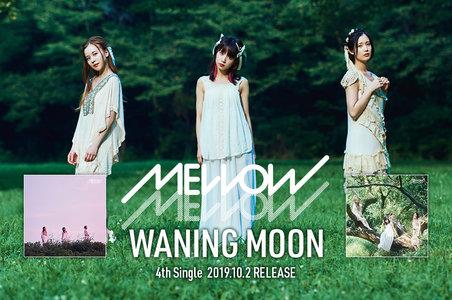 MELLOW MELLOW「WANING MOON」リリースイベント 9/29 ②