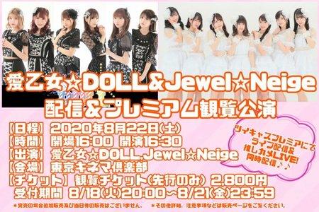 【出演者変更】愛乙女☆DOLL&Jewel☆Neige プレミアム観覧公演