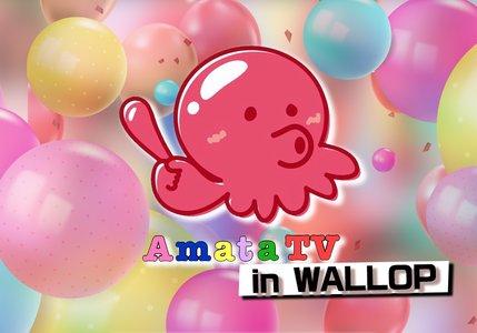 Amata TV in WALLOP #1 番組観覧
