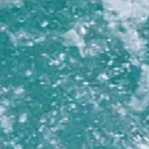 『驚き!海の生きもの超伝説 劇場版ダーウィンが来た! 』公開記念舞台挨拶 11:40回