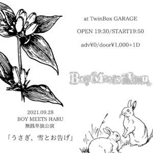 BOY MEETS HARU 無銭単独ライブ 「うさぎ、雪とお告げ」