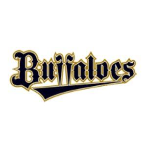プロ野球公式戦 オリックス・バファローズvs東北楽天ゴールデンイーグルス
