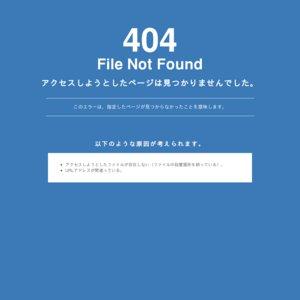 劇場版 仮面ライダー555 パラダイスロスト』1万人エキストラ