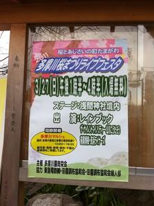 2011多摩川桜まつりライブフェスタ(レインブック)