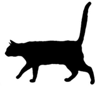 石川智晶のMUSIC × TALK × 気まぐれMENU  「平日の猫の有り様」春・夏・秋・冬 BirthDay記念イベント 2017年  3月21日(火)
